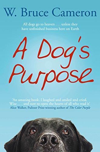 dog's purpose.jpg